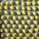 8198-meyer-lemon-meringue-cookies-small