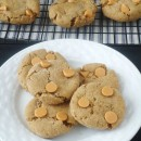 butterscotch-cookies_1