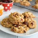 cranberry-oatmeal-chip-sqlg