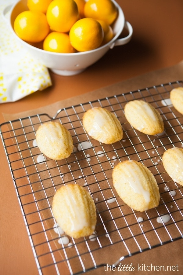 Meyer Lemon Madeleine Cookies | The Little Kitchen
