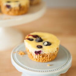 Lemon Blueberry Mini Cheesecakes