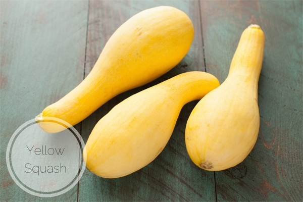 Yellow Squash (how to freeze them & cook them) from thelittlekitchen.net