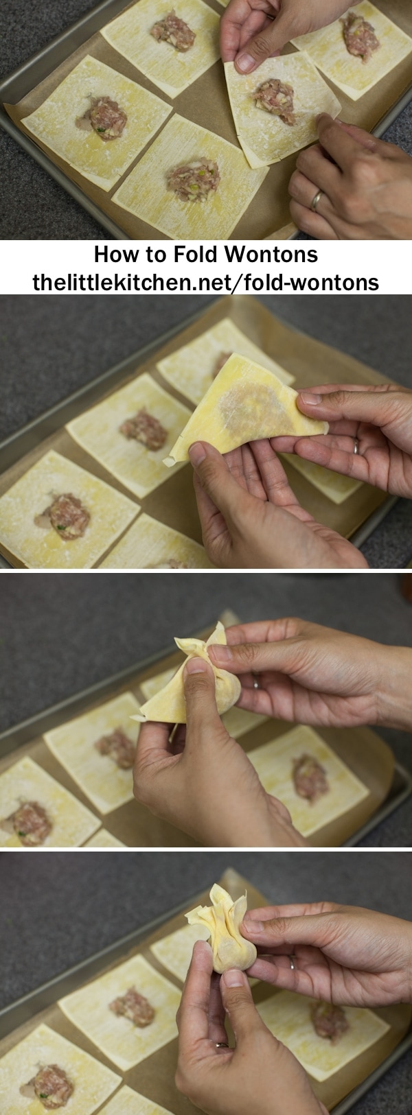How to Fold Wontons thelittlekitchen.net