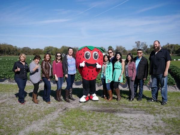 Strawberry Farm Tour