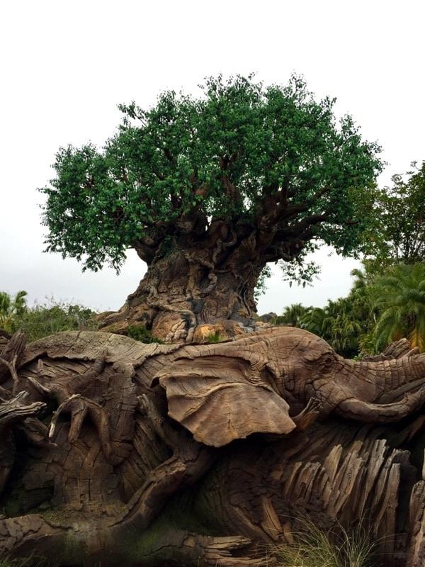 My Walt Disney World Experience // Food Blog Forum Orlando 2015 - The Little Kitchen