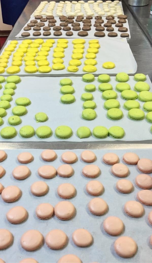 Macaron Class