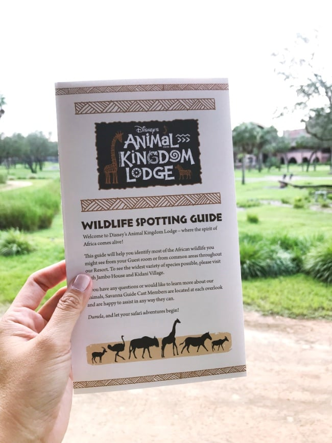 Walt Disney World trip Animal Kingdom Lodge animal guide
