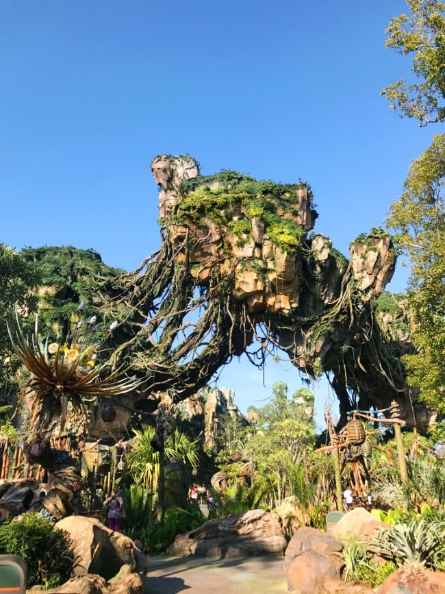 Walt Disney World trip Animal Kingdom Pandora - Land of Avatar floating mountain