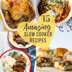 15 Awesome Slow Cooker Recipes thelittlekitchen.net