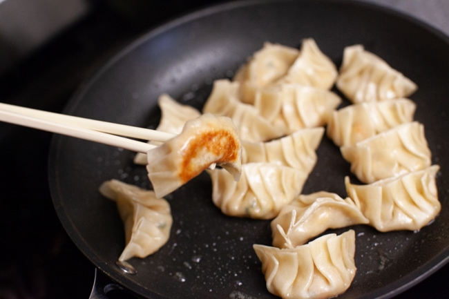 Vegetarian Dumpling with browned bottom, being picked up from skillet with chopsticks from thelittlekitchen.net